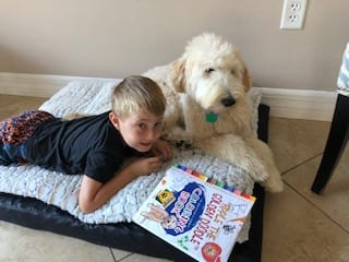 picture of a fan of apple the golden doodle™ named Maxwell