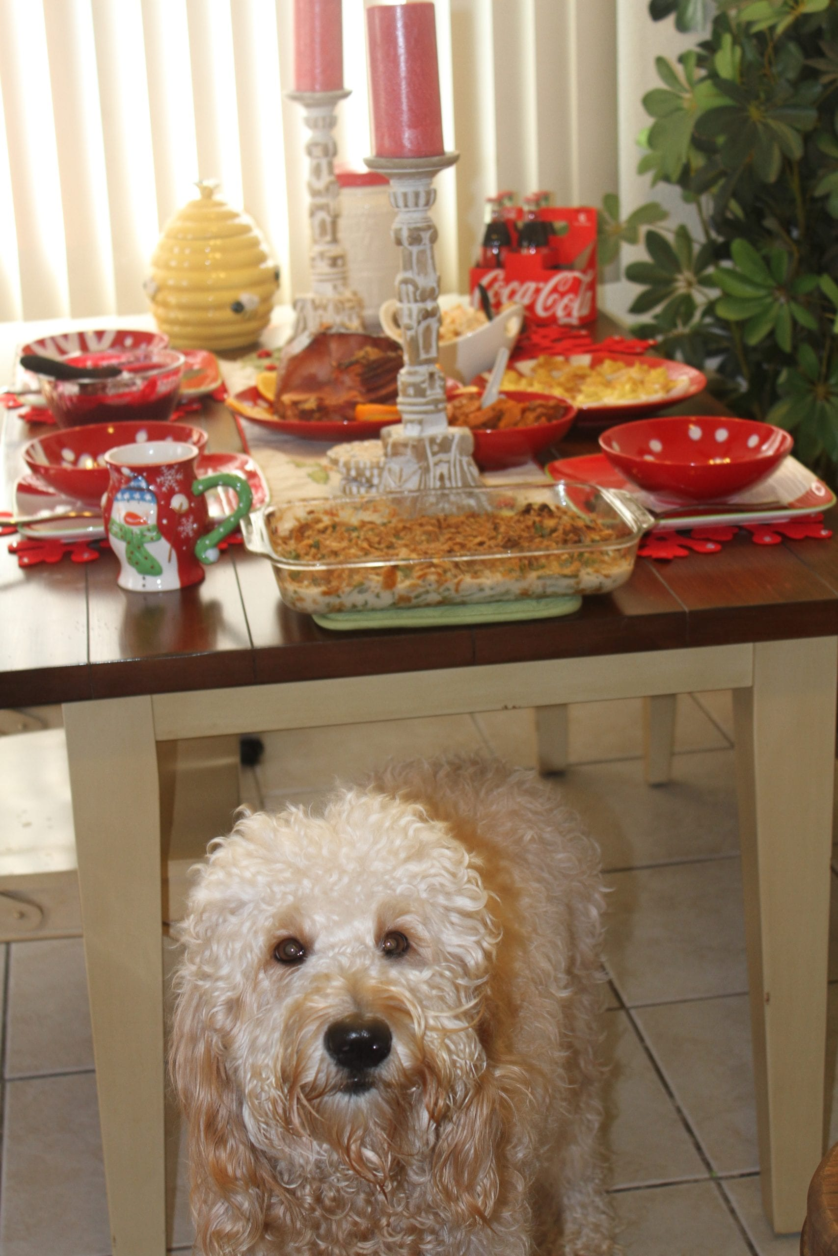 picture of Thanksgiving dinner