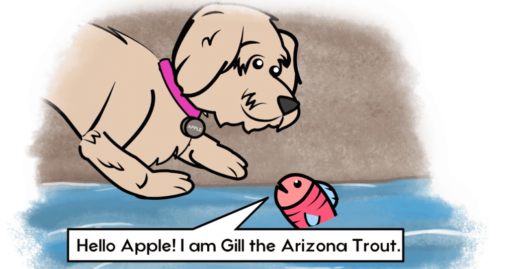 picture of apple the golden doodle and gill the Arizona trout