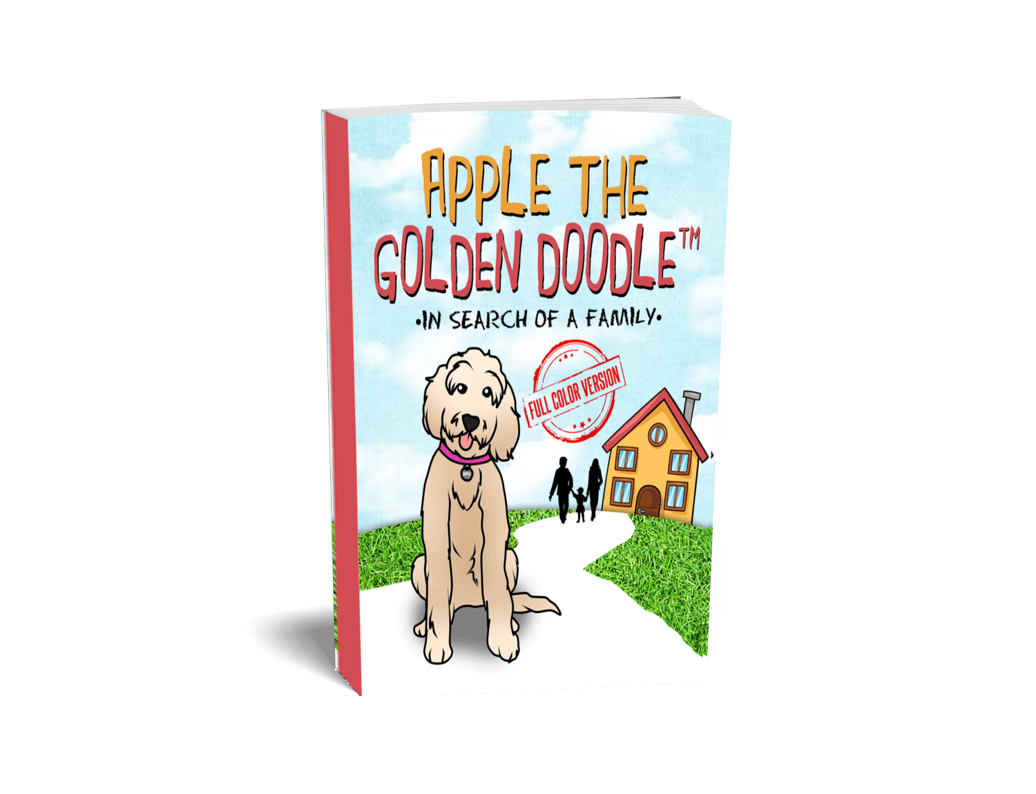 picture of In search of a family full color version books